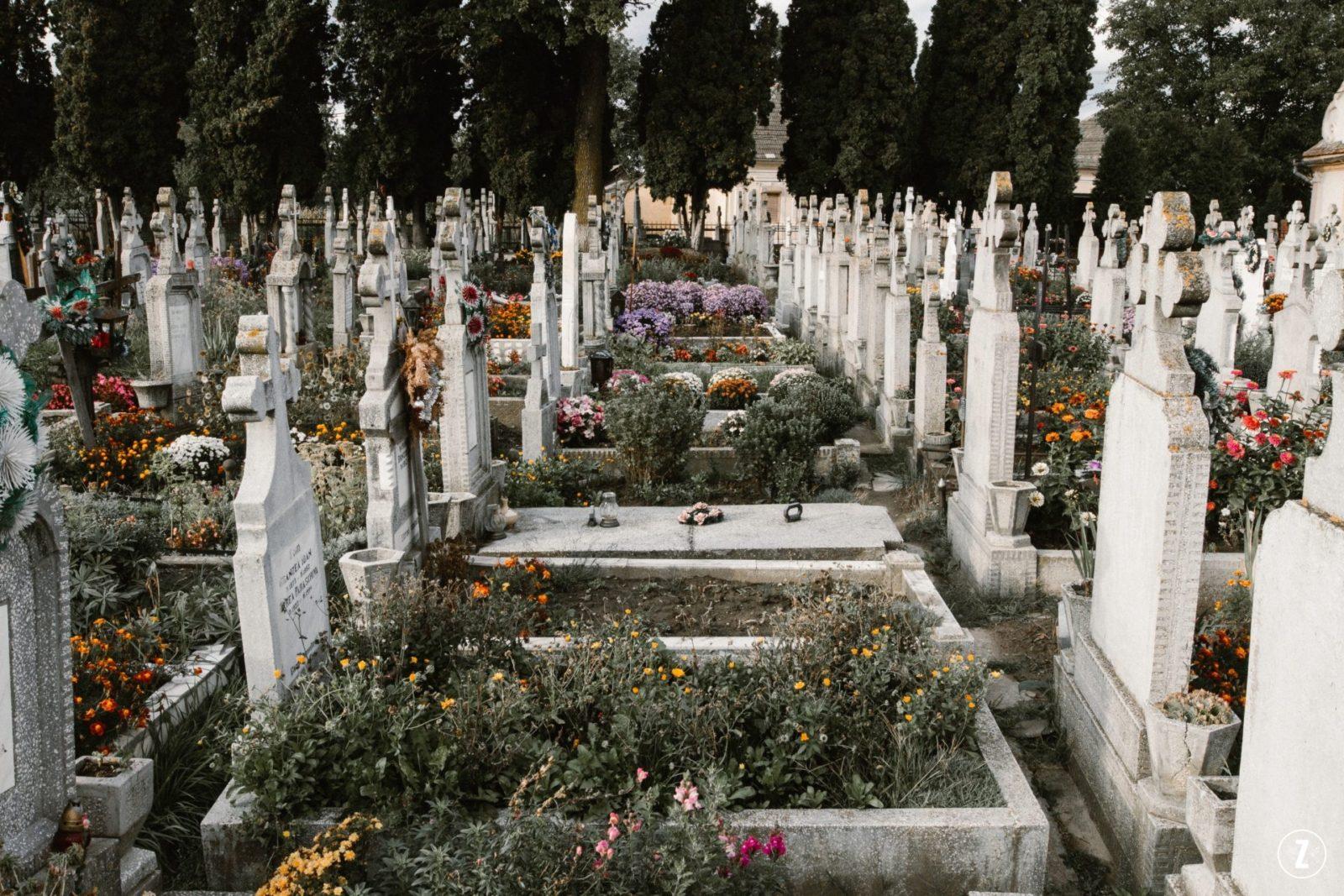 Bon, chryzantemy, Dia de los Muertos, flor de muertos, hiacynt, historia, jaskinia Raqefet, jodla olbrzymia, La Toussaint, mahonia pospolita, mięta, mitologia, narcyz, przesady, szalwia, tradycje, zawilec, grobowiec, mezczyzna z kwiatami