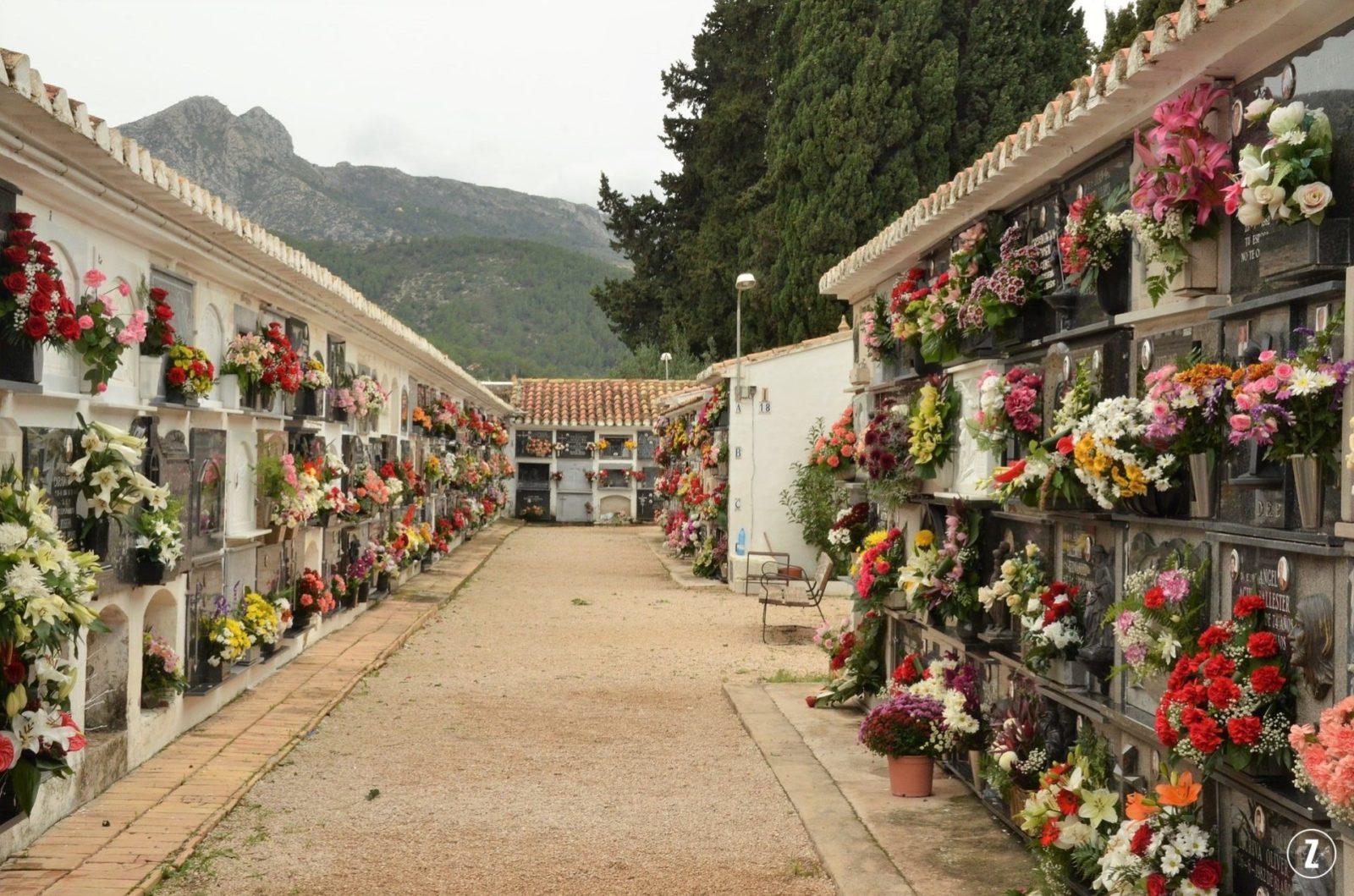 1 listopada, astry, chryzantemy, cynie, gozdziki, kwiaty ciete, lilie, pielęgnacja, roze, swieto, trwalosc cietych kwiatow, Wszystkich Swietych