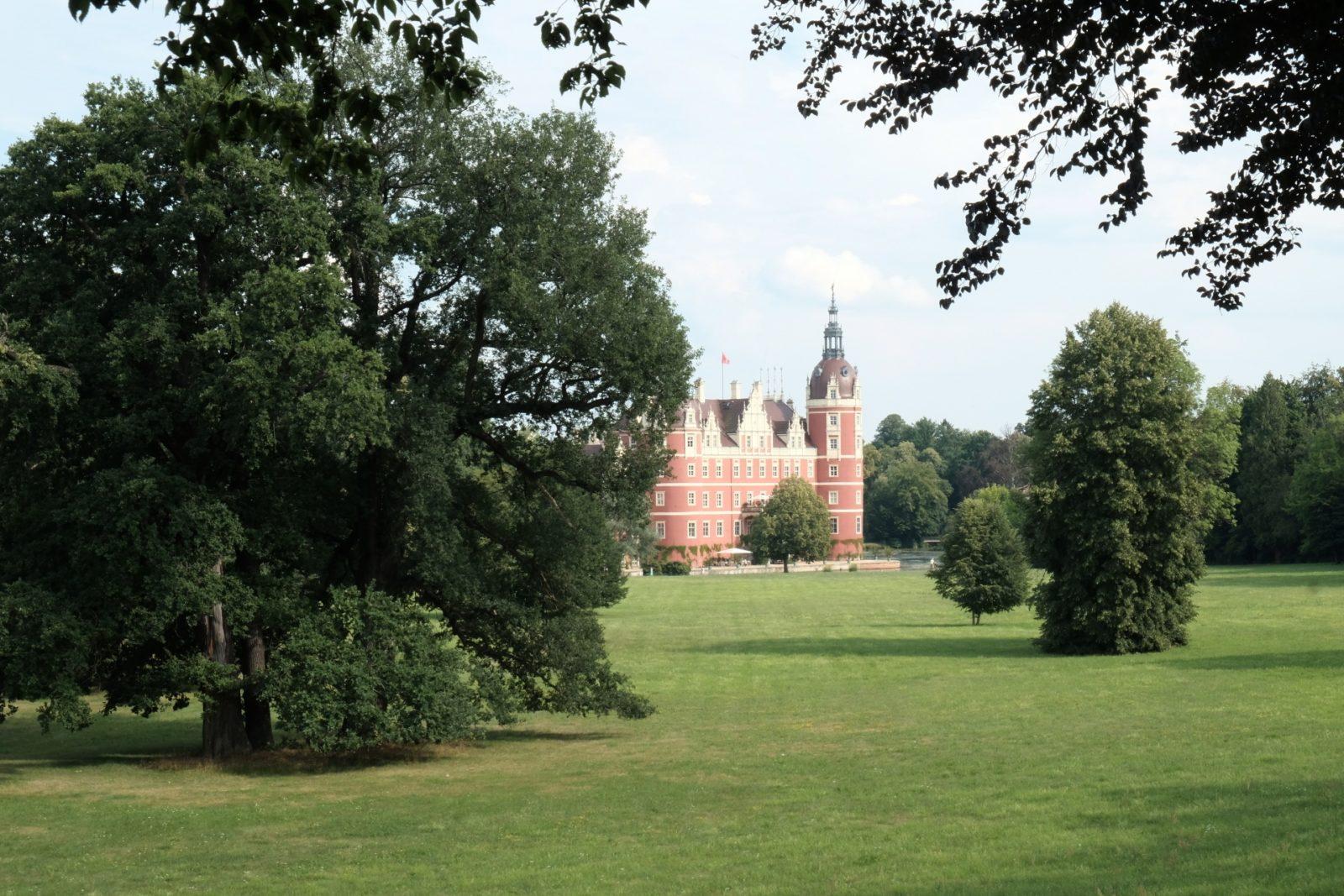 Park Mużakowski, Nowy Zamek, łąki
